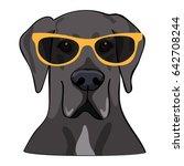 vector illustration portrait of ... | Shutterstock .eps vector #642708244