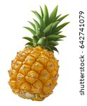 mini pineapple angle isolated... | Shutterstock . vector #642741079
