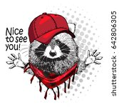 vector raccoon with red cap....