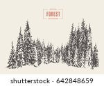 pine forest  vector... | Shutterstock .eps vector #642848659
