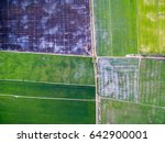 aerial view of green rice farms ... | Shutterstock . vector #642900001