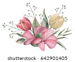 hand painted watercolor... | Shutterstock . vector #642901405