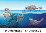 seals swimming in the ocean... | Shutterstock .eps vector #642904621