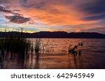 beautiful lake view on sunset.... | Shutterstock . vector #642945949