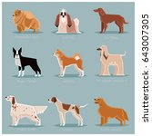 dog flat icons set | Shutterstock .eps vector #643007305