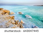 view of dead sea coastline at... | Shutterstock . vector #643047445