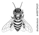 hand drawn bee sketch in black...   Shutterstock .eps vector #643073419