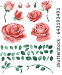 beautiful colorful set of rose... | Shutterstock .eps vector #643193491