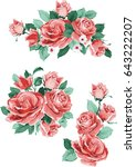 set collection flowers roses ... | Shutterstock .eps vector #643222207