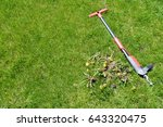weed removal by hand   lawn... | Shutterstock . vector #643320475