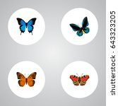 realistic common blue ... | Shutterstock .eps vector #643323205