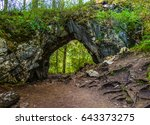 Small photo of Forest arch way landscape. Forest trail through arch way