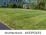 lawn stripes and strips in... | Shutterstock . vector #643392631