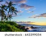 tropical beach scene.  palm...   Shutterstock . vector #643399054