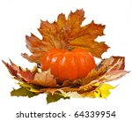 pumpkin with  colorful autumn... | Shutterstock . vector #64339954