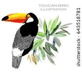 toucan bird watercolor... | Shutterstock . vector #643518781