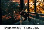 opening gate | Shutterstock . vector #643522507