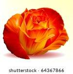 vector photo realistic... | Shutterstock .eps vector #64367866