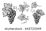 set of grapes monochrome sketch....   Shutterstock .eps vector #643725349