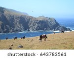 landscape and horses in... | Shutterstock . vector #643783561