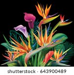 floral bouquet with strelitzia... | Shutterstock .eps vector #643900489