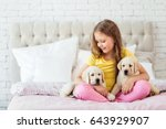 Stock photo girl sit on the bed with labrador puppies indoor 643929907