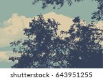 silhouette of branches and leaf ... | Shutterstock .eps vector #643951255