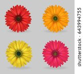 a collection of vibrant multi...   Shutterstock .eps vector #643994755
