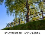 Barnwood Fence On Hill With...