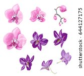 Set Orchid Flowers ...