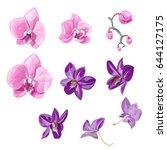 Set Orchid Flowers ...