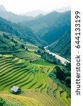 rice terrace in mucangchai... | Shutterstock . vector #644133199