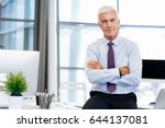 success and professionalism in... | Shutterstock . vector #644137081