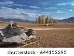 old tree trunks lying on the... | Shutterstock . vector #644153395