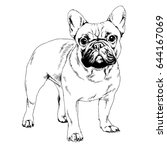 dog drawn with ink on white... | Shutterstock . vector #644167069