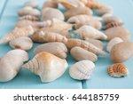 Seashells And Pebbles Pattern...
