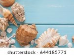 Sea Vacation. Seashells Frame...