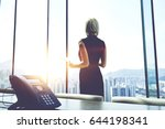 back view of a businesswoman... | Shutterstock . vector #644198341