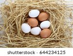chicken eggs  eggs in the nest | Shutterstock . vector #644234125
