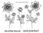 dahlia night butterfly flowers... | Shutterstock .eps vector #644246965