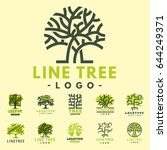 tree vector logotype oak... | Shutterstock .eps vector #644249371