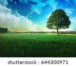 single tree in field with blue... | Shutterstock . vector #644300971