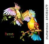 illustration of two parrot... | Shutterstock .eps vector #644381479