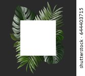 palm leafs background concept | Shutterstock . vector #644403715