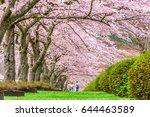 Fuji Reien Cemetery  Shizuoka ...