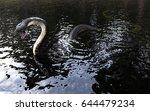 3d King Cobra Snake On Water ...