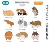 hamster breeds icon set flat... | Shutterstock .eps vector #644482519