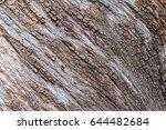 Tree Bark Detail Texture...