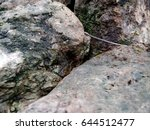 nook of stone  dirty wet rocks | Shutterstock . vector #644512477