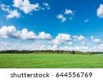 spring or summer landscape with ... | Shutterstock . vector #644556769